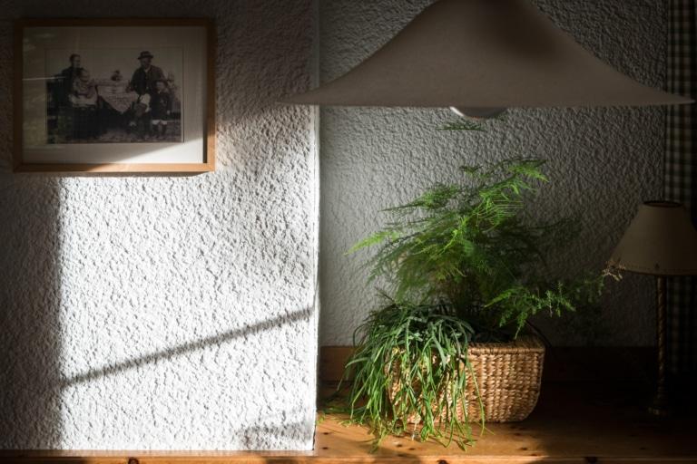 verwöhnen und entspannen in der kostbaren Urlaubszeit, Bacherhof
