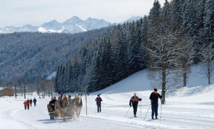 Winter Vergnügen, Langlaufen, Pferdeschlittenfahrten