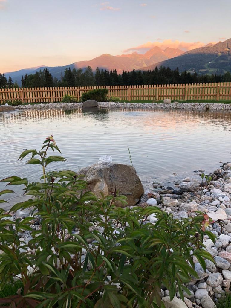 Badeerlebnis am Schwimmteich, Bacherhof in Ramsau am Dachstein