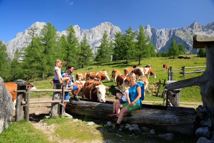 Urlaubsregion Ramsau am Dachstein, wandern auf 3 Ebenen
