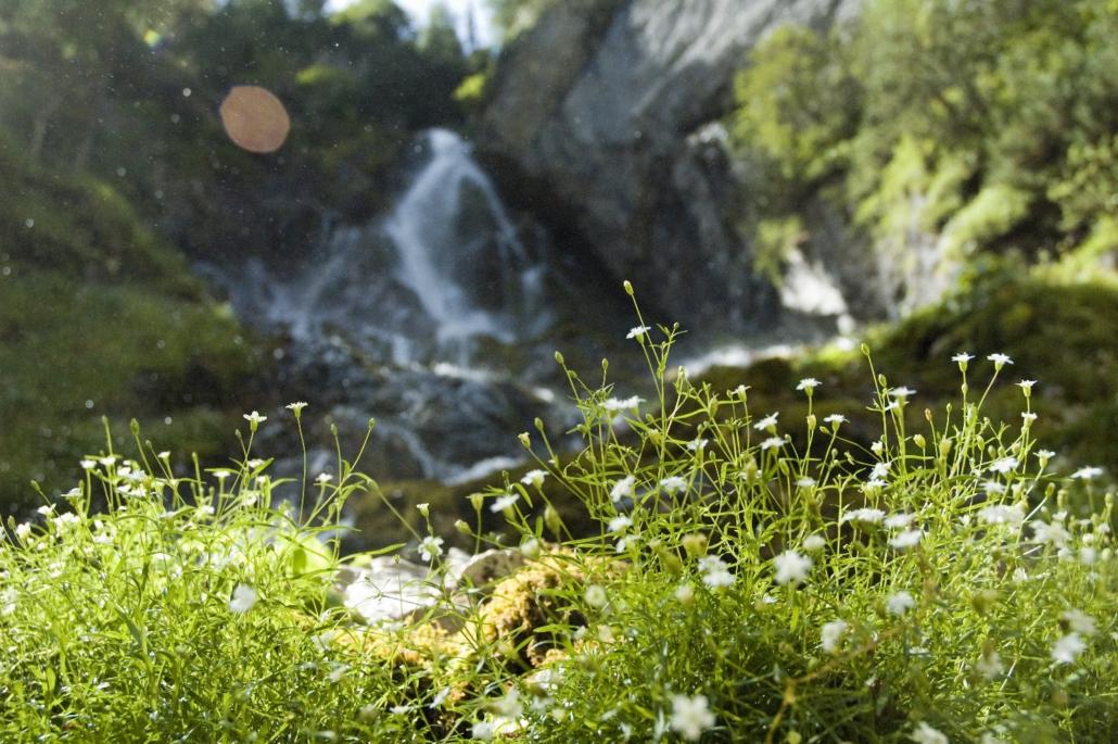 Klammerlebnis-pure Natur und Element Wasser